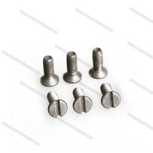 Titanium Flat Head One Slot Screws RC Car